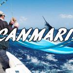 Рыбы Канарских островов