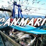 Испания отстояла квоты на рыбную ловлю